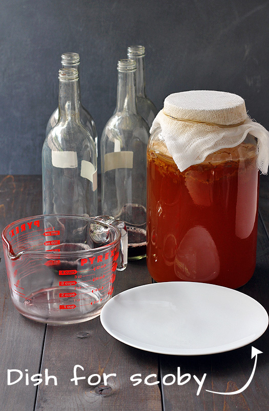 How to Make Kombucha Step 4 | http://tiaskitchen.com/make-kombucha-step-step