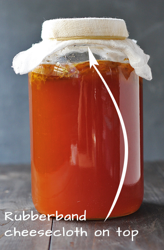How to Make Kombucha Step 13 | http://tiaskitchen.com/make-kombucha-step-step
