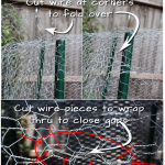 How-to-Plant-and-Herb-Garden-to-Keep-Squirrels-Out---Part-2-v2
